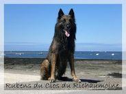 Rubens du Clos du Richaumoine