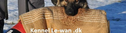Le-wan