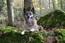Andjy des Loups Mutins