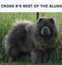 Cross B's Best of the Blues