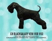 Blackgalaxy Veni Vidi Vici