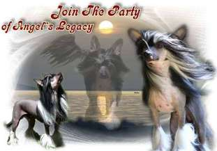 Join The Party Of Angel's Legacy