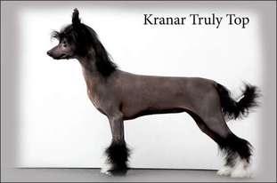 Kranar Truly Top