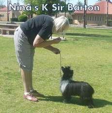 Nina's K Sir Barton