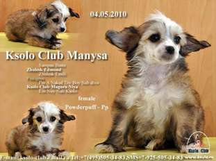 Ksolo Club Manysa