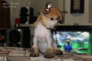 Mimi Dog Doll Lolita...
