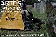Artos Fatymona