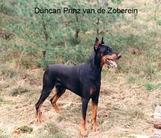 Duncan Prinz van de Zoberein