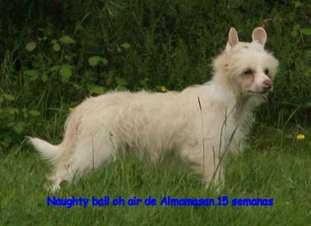 Naughty Ball Oh Air De Almamasan