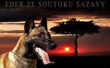 Eder ze Soutoku Sázavy