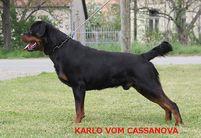 Karlo vom Cassanova