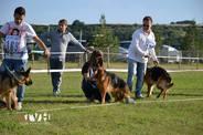 Ylena Team von Helden
