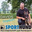 David Heinicke