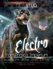 Electro from Primo's Imperium