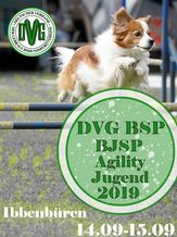 DVG  Bundessiegerprüfung Agility  (Jugend)