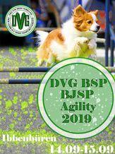 DVG  Bundessiegerprüfung Agility