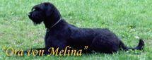 Ora von Melina