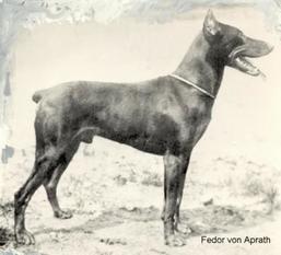Fedor von Aprath (deutz)