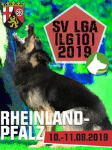 SV LGA (LG10) 2019 - IGP 3