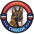 CHILCOA Meisterschaft IPO