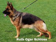 Ruth Oger Schloss