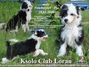Ksolo Club Loran