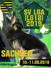 SV LGA (LG18) 2019 - IGP 3