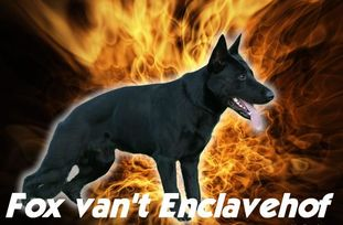 Fox van't Enclavehof