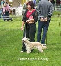 Lemiz Sweet Charity Of Ajatiaza