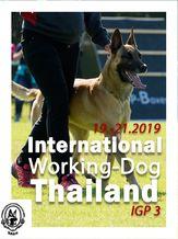 2019 International Working Dog Thailand 2019 - IGP 3