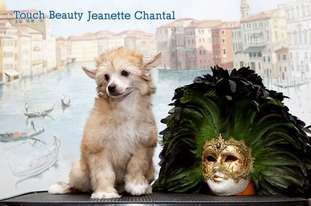 Touch Beauty Jeanette Chantal