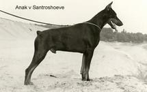 Anak van Santroshoeve