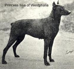 Prinsessin Illisa van de Konigstad (westphalia)