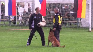Eddie Speedy Maribor