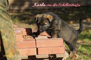 Karla von der Schillerstraße
