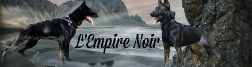 L' Empire Noir
