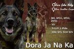 Dora Ja Na Ka