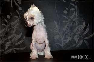Mimi Dog Doll Gum Tree