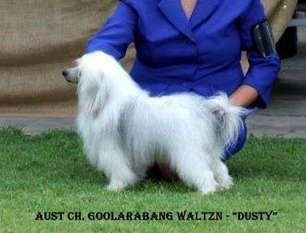 Goolarabang Waltzn