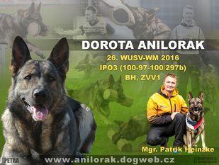 Dorota Anilorak
