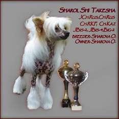Sharol Shi Takesha
