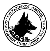 Mediterranean Dog Challenge Agility Championship 2018