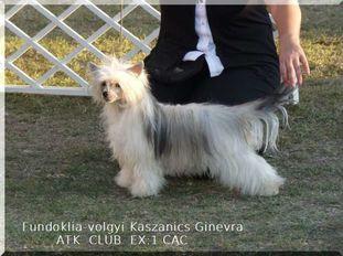 Fundoklia-völgyi Kaszanics Ginevra