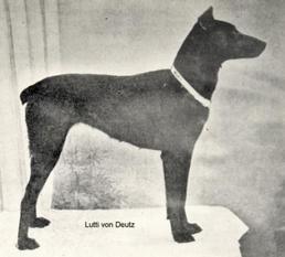 Lutti von Deutz
