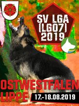 SV LGA (LG07) 2019 - IGP 3