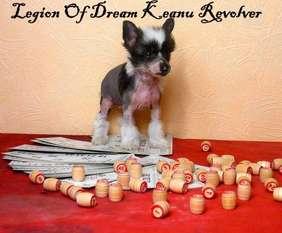 Legion Of Dream Keanu Revolver