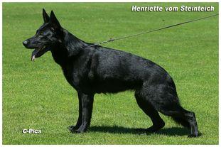Henriette vom Steinteich