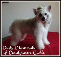 Dusty Diamonds Of Candymoor Castle