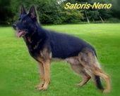 Satoris Neno