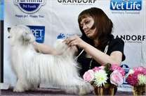 Grand Show Vanessa Paradis